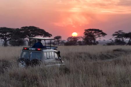 Waarom een rondreis in Tanzania een must is!